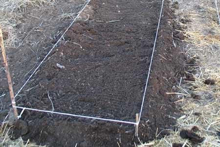 Как правильно делать грядки на огороде для моркови и лука 28