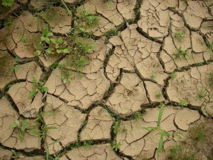 истощение-гумированного-слоя-почвы