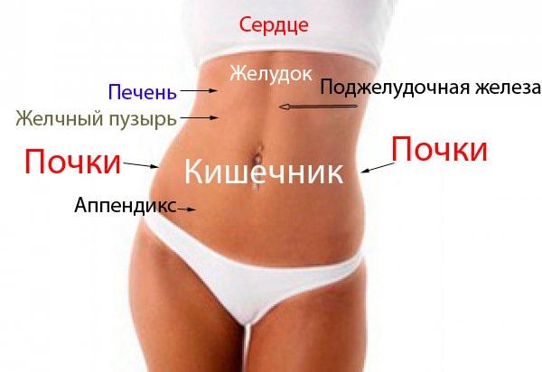 болит желудок и ребра Болит желудок, симптомы и лечение боли в желудке