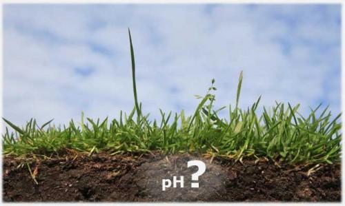 soil-acidity-1
