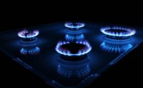 Стоит ли покупать газовую плиту?