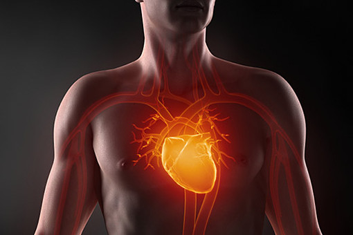 Авторитет сердца