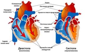 Диастолическая дисфункция и диастолическая сердечная недостаточность