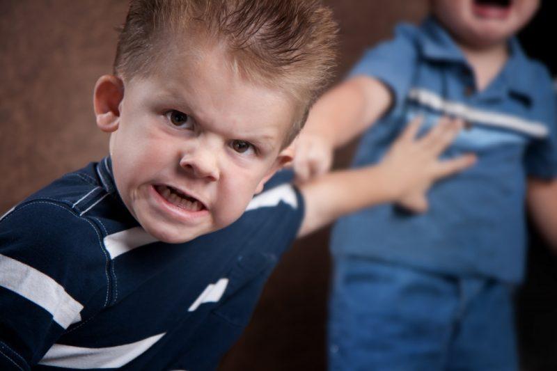 Детская агрессия: друг или враг?