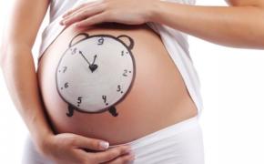 Репетиция родов: чему стоит поучиться будущей маме?