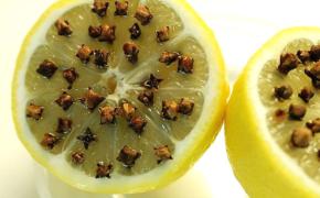 Натуральное средство от комаров и мошек