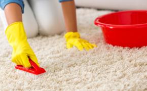 Как сохранять ковры чистыми: 6 аккуратных привычек