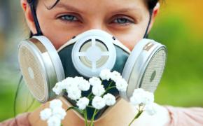 3 вопроса об аллергии