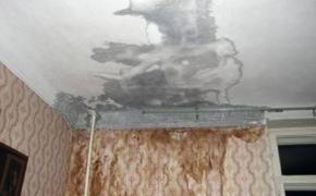 Потоп в квартире: срочные меры!
